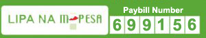 Enet Online Solutions MPESA Pay Bill 699156
